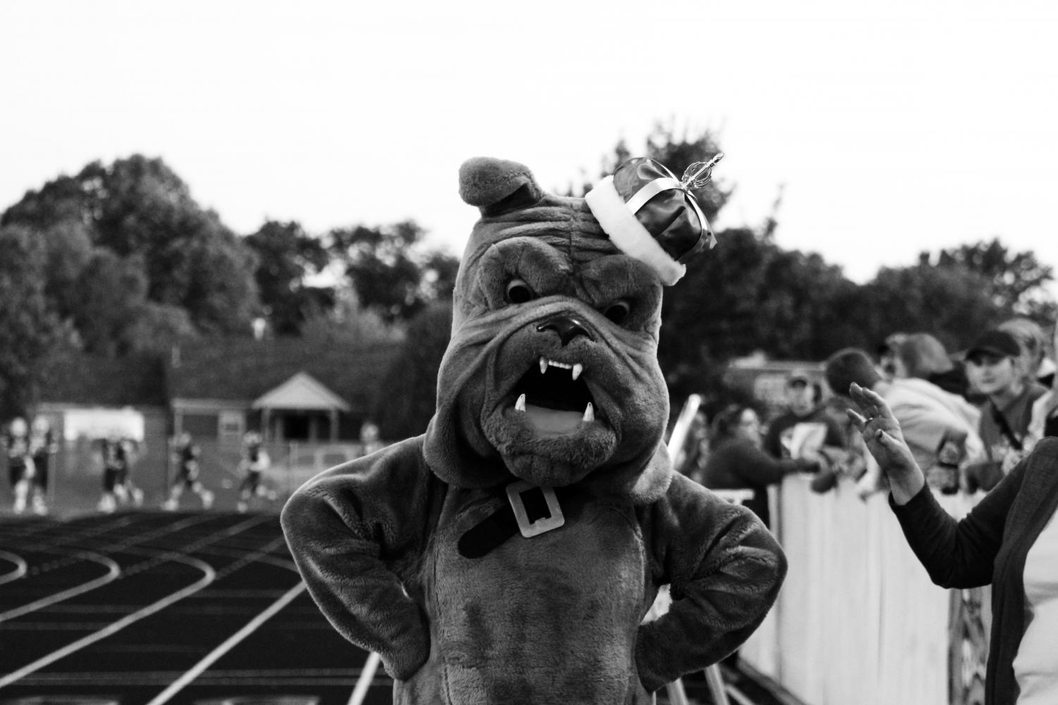 The Bulldog stands with pride at a Homecoming game.