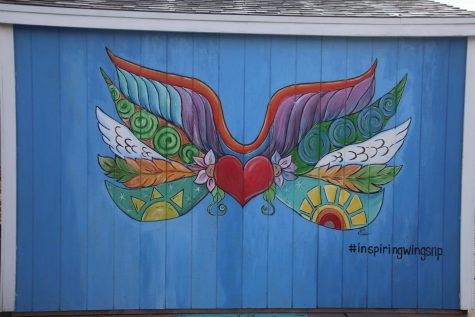 Pictured above are the wings that are on the shed in front of the RDAP building.